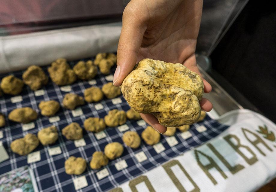 معروف ترین جشنواره های غذا در سراسر جهان