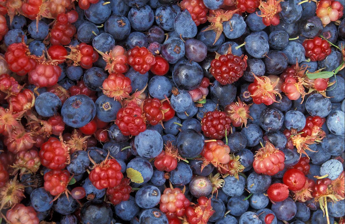 میوه های مفید قبل از خواب